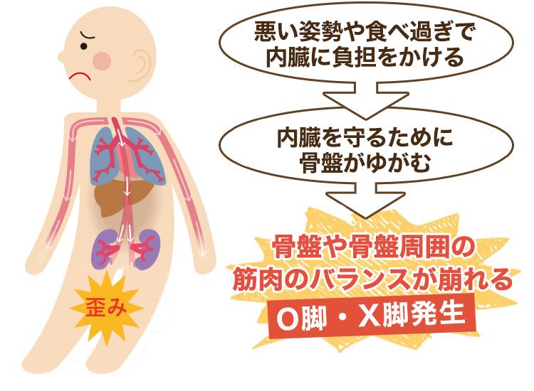 内臓疲労や姿勢が原因のO脚・X脚