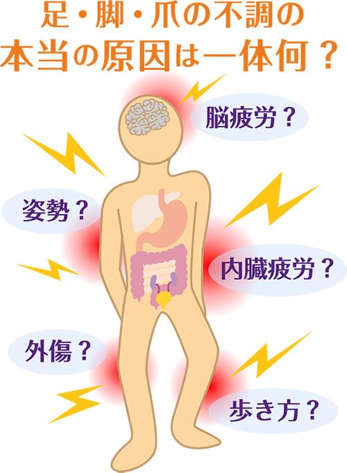 足・脚・爪の不調の本当の原因は一体何?